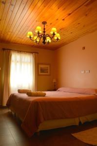 Una cama o camas en una habitación de Confin Patagonico