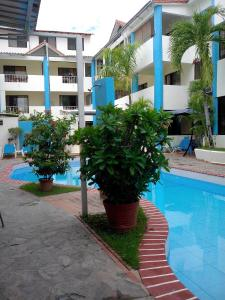 The swimming pool at or near Apartment in Sosua Center