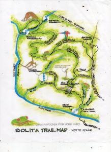 Blick auf Bolita Rainforest Hostel and Cabinas aus der Vogelperspektive