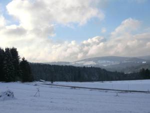 Ferienhaus Gustl im Winter