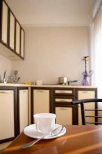 A kitchen or kitchenette at Apartment on Sobornyi Avenue