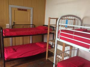 A bunk bed or bunk beds in a room at Cairns City Backpackers Hostel