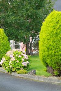 A garden outside Parkhouse B&B