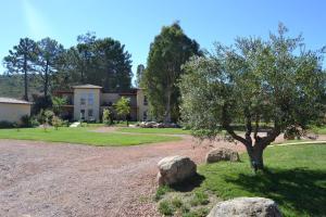 A garden outside Marina di Favona