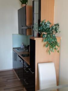 Kuchyň nebo kuchyňský kout v ubytování Apartmán McVitek