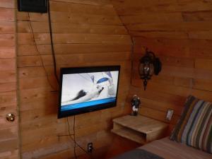 Télévision ou salle de divertissement dans l'établissement L'Oasis du Pirate