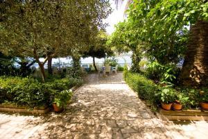 A garden outside Apartments Vila Miranda