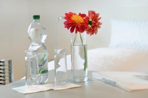 Getränke in der Unterkunft Bed & Breakfast Meerbusch