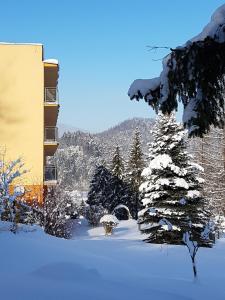 Obiekt KORONA Sanatorium Uzdrowiskowe Teresa Korona zimą