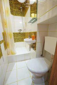 A bathroom at Apartment on 11 Staroievreiska Street