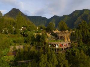 Pagupon Bromo Budget Lodge dari pandangan mata burung