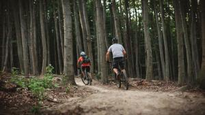 Radfahren an der Unterkunft Landgasthof zur Linde Laaben oder in der Nähe