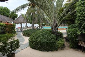 A garden outside Linaw Beach Resort