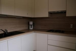 Cuisine ou kitchenette dans l'établissement Apartment Cuypers