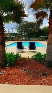 The swimming pool at or near Calloway Inn and Suites