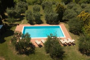 Vue sur la piscine de l'établissement Agriturismo Villa Panorama ou sur une piscine à proximité
