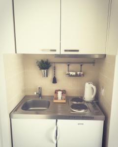 A kitchen or kitchenette at Apartments Legacy