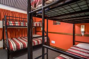 A bunk bed or bunk beds in a room at Alice Springs YHA