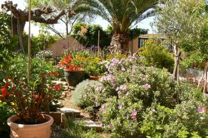 A garden outside L' Escale Tranquille