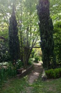 A garden outside Les Lilas de Diane