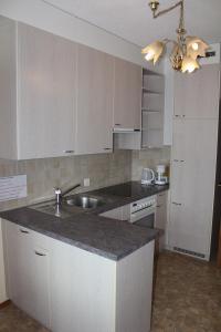 Küche/Küchenzeile in der Unterkunft Apartment Hulfteggpass