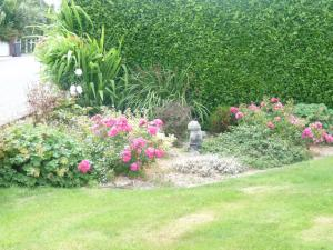 A garden outside Cloverlawn B&B