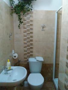 A bathroom at Apartma Františkovy Lázně