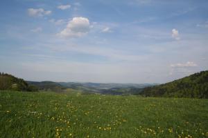 Naturlandschaft in der Nähe der Ferienwohnung