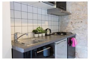 A kitchen or kitchenette at Domaine de la Grange aux Dîmes