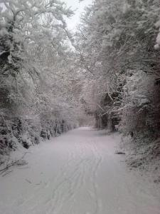 Stoke by Nayland B&B Poplars Farmhouse during the winter
