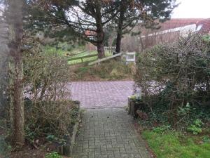 A garden outside Vlinderhuis 21C