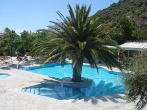 Πισίνα στο ή κοντά στο Neos Ikaros