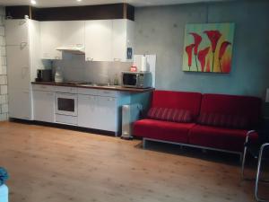Küche/Küchenzeile in der Unterkunft Studios Faoug