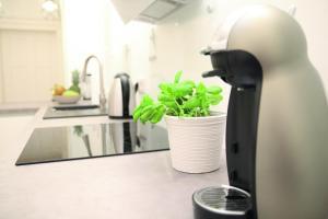 Küche/Küchenzeile in der Unterkunft Auster-Appartements