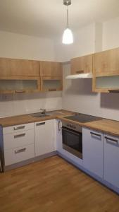 A kitchen or kitchenette at Apartment David Garden Towers