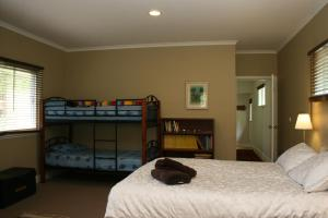 A bunk bed or bunk beds in a room at Newhaven House