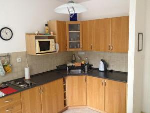 Kuchyň nebo kuchyňský kout v ubytování Apartmán Sportovní