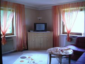 TV/Unterhaltungsangebot in der Unterkunft Haus Talblick