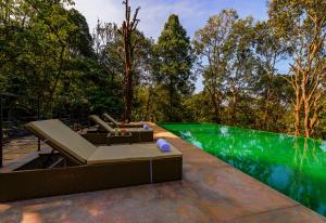 The swimming pool at or close to Wayanad Wild Rainforest Lodge