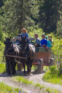 Horseback riding at the lodge or nearby
