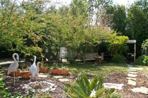 A garden outside Hadas - Love