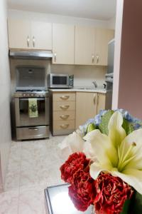 A kitchen or kitchenette at Hotel Coral Suites