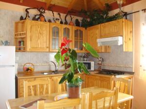 A kitchen or kitchenette at Casa Rural Isabel