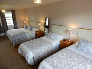 A bed or beds in a room at Auburndale B&B