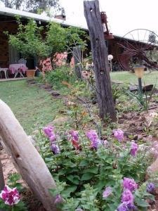 A garden outside Twilight Grove Farm