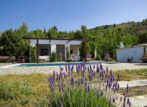 The swimming pool at or near Cortijo Solera
