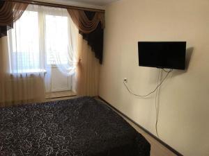Телевизор и/или развлекательный центр в Apartment on Lomonosova