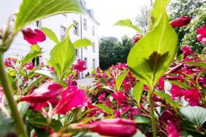 A garden outside Hotel & Apartments Altstadtperle