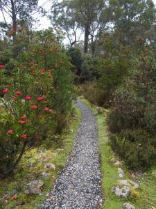 A garden outside Cradle Mountain Highlanders