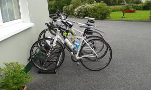 Biking at or in the surroundings of The Rose Garden Bed & Breakfast and Cafe